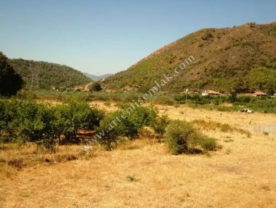 Dalaman Dereköy Mah. Farm For Sale In Fethiye Muğla Highway.