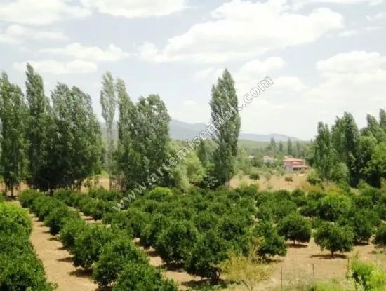Land For Sale In Köyceğiz Muğla .1000 M2.