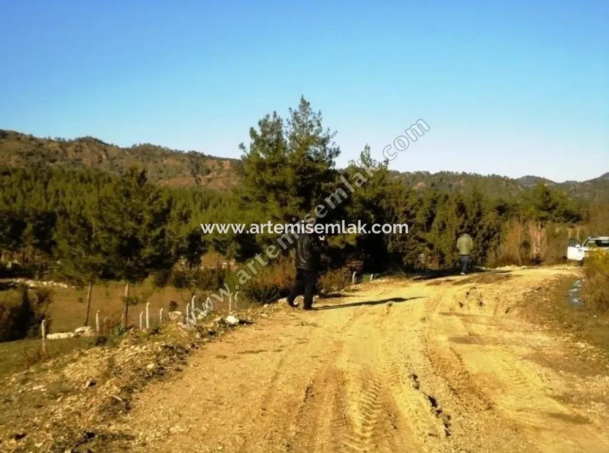 Dalaman Da Karacaağaç Köyünde Satılık Müstakil Tarla .Içinde Evi Var.7260 M2.