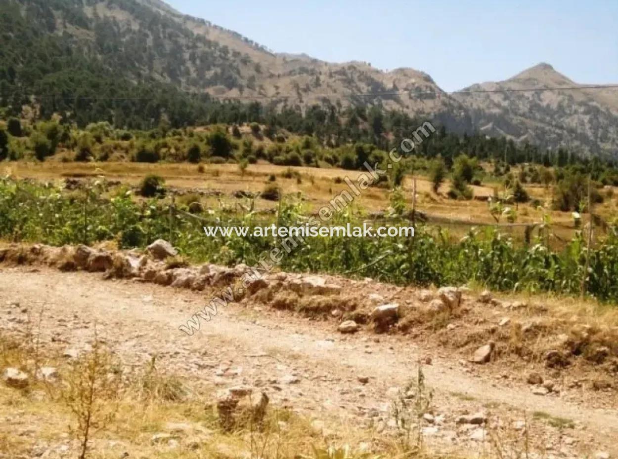 Denizli Çameli Arıkaya Köyünde Satılık Ceviz Bahçesi.