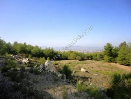 Dalaman Şerefler De Satılık Tarla. 18000 M2.