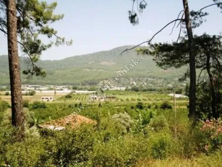 Dalaman Kargınkürü Köyünde Satılık Tarla.1200 M2.